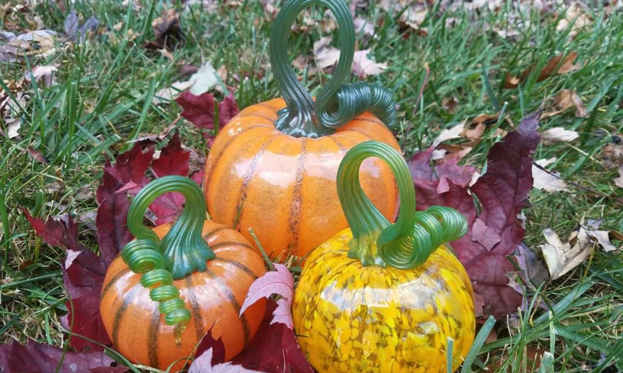 """NOW BOOKING FALL and WINTER workshops, currently at 60% off using code """"Pumpkin60"""" at checkout. More details below"""